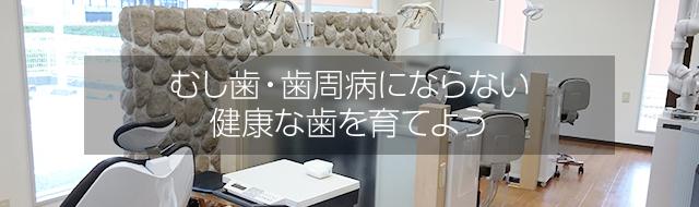 むし歯・歯周病にならない健康な歯を育てよう